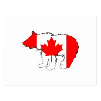 KanadaBärenjunges Postkarte