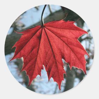 Kanadisches Ahornblatt-runde Aufkleber