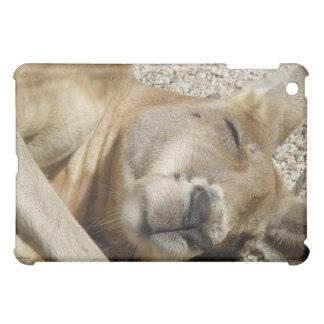 Känguru-Schlafen Australien iPad Mini Hülle