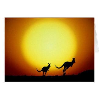 Kängurus im australischen Hinterland Mitteilungskarte
