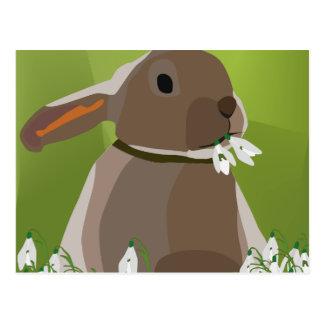 Kaninchen, das snowdrops isst postkarte