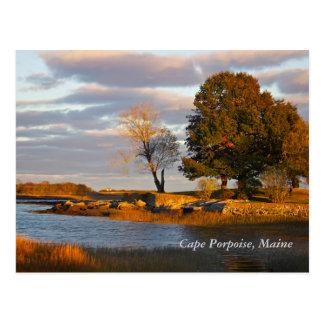 Kap-Tümmler, Maine Postkarte