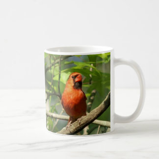 Kardinal, Becher Kaffeetasse