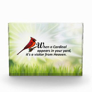 Kardinal in Ihrem Yard Fotoblock
