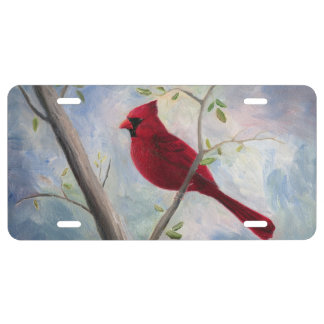 Kardinal US Nummernschild