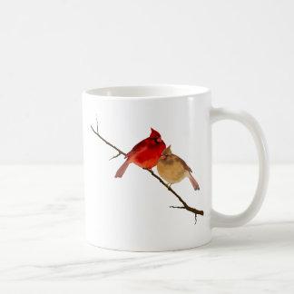 Kardinäle auf einer Niederlassung Kaffeetasse