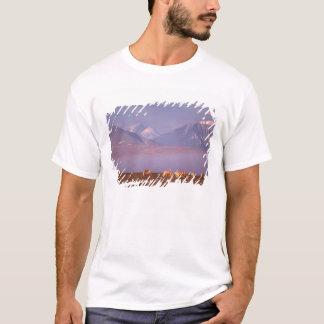 Karibu des unfruchtbaren Bodens, T-Shirt