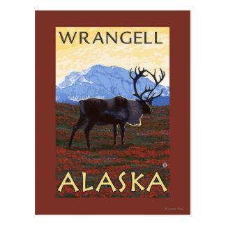 Karibu-Szene - Wrangell, Alaska Postkarte