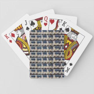Karte Argento Spielkarten