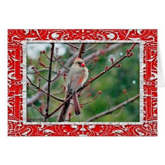 Karten-Weihnachtskarte des Kardinals-4539 Karte