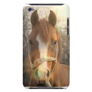 Kastanien-arabischer PferdiTouch Fall iPod Touch Hülle