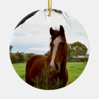 Kastanien-Pferd, das einen Banksia-Baum Keramik Ornament