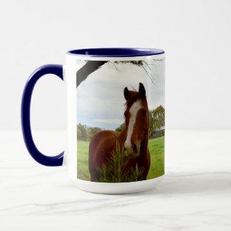 Kastanien-Pferd, das einen Banksia-Baum Tasse