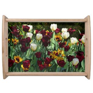 Kastanienbraune und gelbe Tulpe-buntes Blumen Tablett