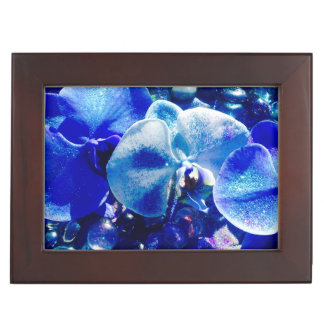 Kasten Andenken der blauen Orchidee Erinnerungsschachteln