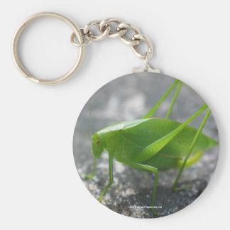 Katydid Heuschrecken-Natur-Foto Keychain Standard Runder Schlüsselanhänger