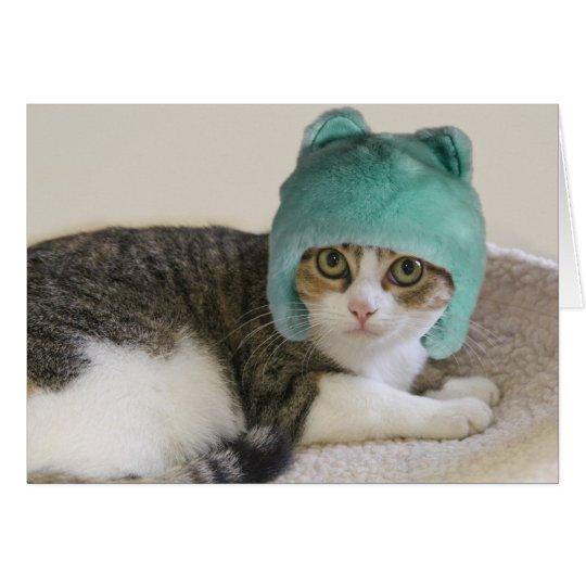 Katze im Hut-Geburtstag durch Fokus für eine Grußkarte