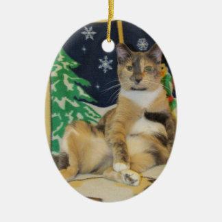 Katze, Kätzchen, Weihnachten, Rettung Ovales Keramik Ornament