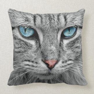 Katze Kissen