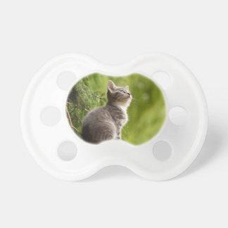 Katze Schnuller