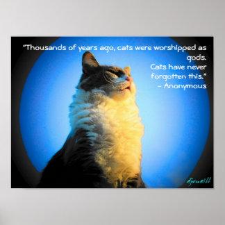 Katzen angebetet als Götter mit anonymem Zitat Poster