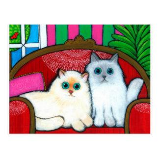Katzen auf Couch Postkarte
