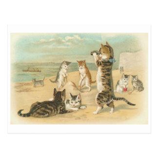 """""""Katzen auf dem Strand"""" Vintag Postkarte"""