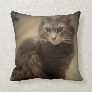 Katzen-Foto Kissen