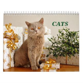 Katzen Kalender