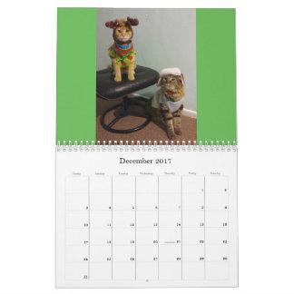 Katzen-Kalender 2017 Wandkalender