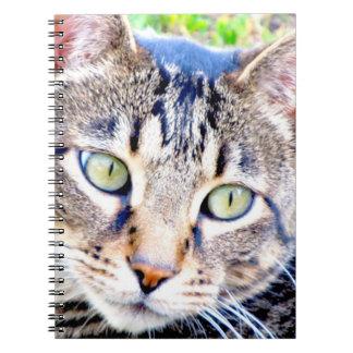 Katzen-Notizbuch Spiral Notizblock