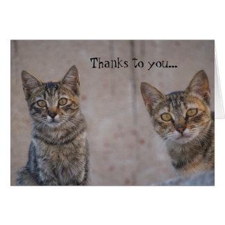 Katzen-Rettungs-Miezekatze-Liebhaber danken Ihnen Karte