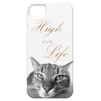 Katzen-Telefon-Kasten/hohes auf dem Leben iPhone 5 Schutzhülle