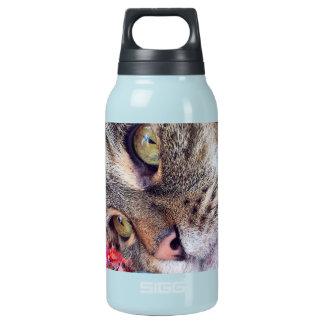Katzen-träumende Flasche heiß u. kalt