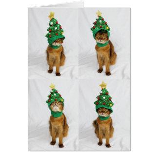 Katzen-Weihnachtsbaum-Hut-Gruß-Karte Karte