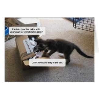 Katzen-Weltherrschaft Karte
