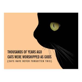 Katzen wurden als Gott-lustige Postkarte angebetet
