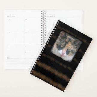 Katzenartige Miezekatze mein Jahr zur Regel Planer