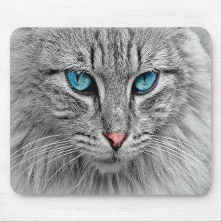 Katzengesichtsnahaufnahme, kundenspezifische mousepad