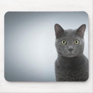 KatzenMousepad Mauspads