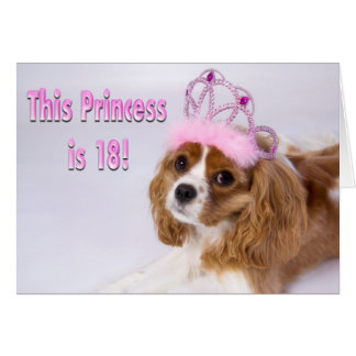 Kavalier-König Charles Card Prinzessin-Is 18 Karte