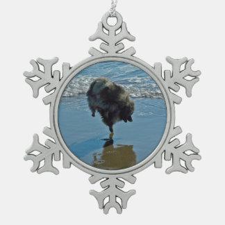 Keeshond-Ballett Schneeflocken Zinn-Ornament