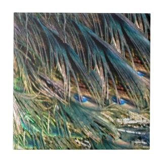 Kehren Sie Pfau-Feder-blaue Augen Kleine Quadratische Fliese