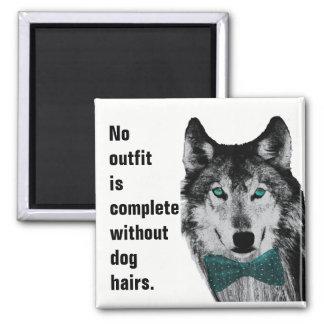 Keine Ausstattung ist ohne Hundehaare komplett Quadratischer Magnet