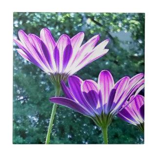 Keramik Blumen Fliese