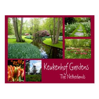 Keukenhof arbeitet Collage im Garten Postkarte
