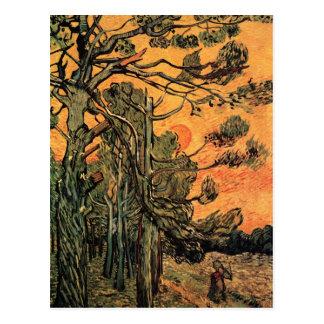 Kiefer am Sonnenuntergang durch Vincent van Gogh Postkarte