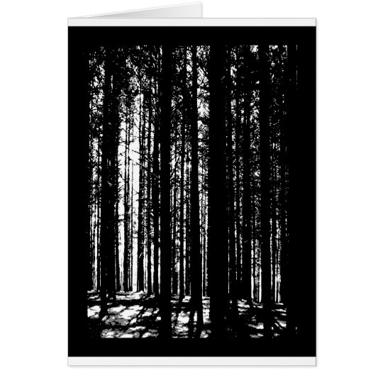 Kiefernwald Grußkarte