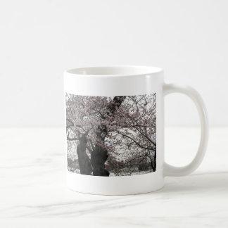 Kirschblüte Washington-DC Kaffeetasse