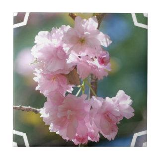 Kirschblüten-Fliese